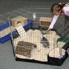 Vloerhoes-geschikt-voor-konijnenren-Dommel